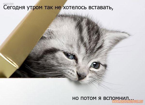 ПЯТНИЦА..