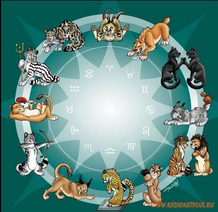 СТРЕСС и знаки зодиака