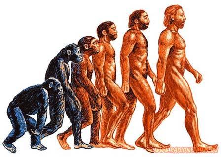 Происхождение человека.