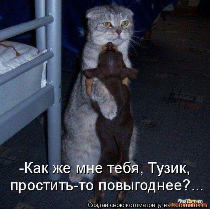 Минская область новости