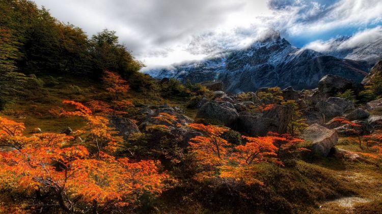 Красивые картинки на рабочий стол: Природа (высокое качество)