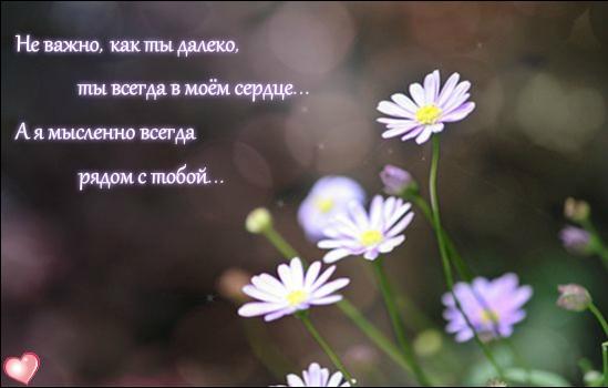 фото ты всегда в моем сердце