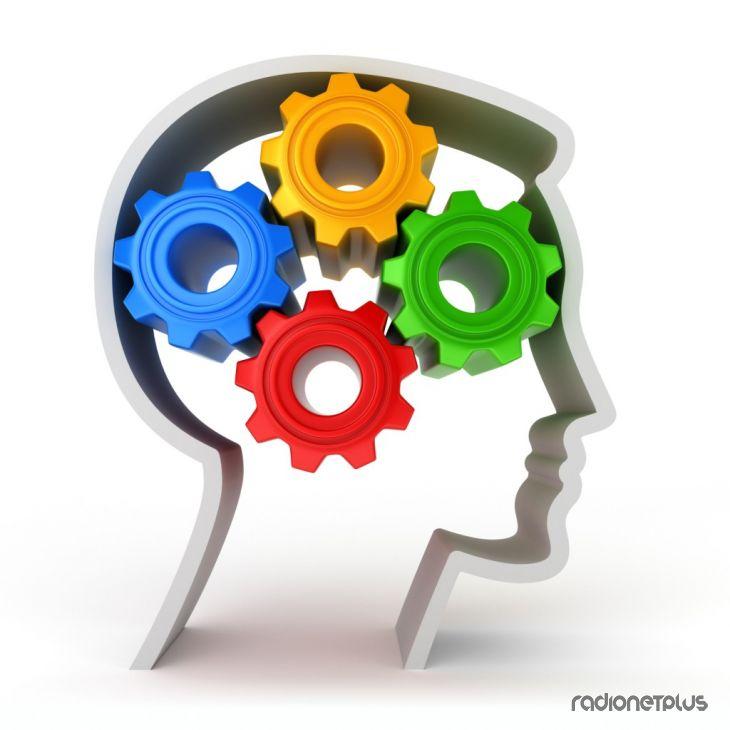 9 фактов работоспособности мозга