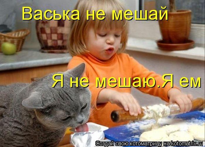 http://www.radionetplus.ru/uploads/posts/2012-08/1344575633_kotomatrix_02.jpg