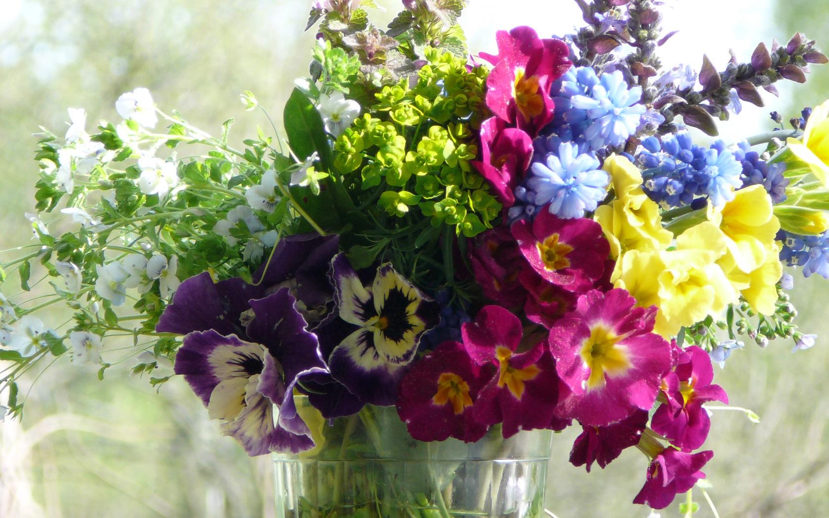 Обои широкоформатные 1920х1080 цветы