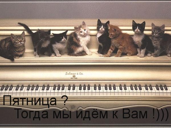 Добавлена.  Mircos789. фото 35 из 763.  Код для вставки фотографии в форумы U-mama.ru.  Модератору!