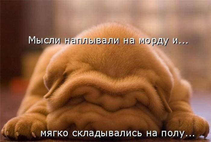 http://www.radionetplus.ru/uploads/posts/2012-10/1351487586_1313439546_1313354149_1312900164_1614744_482469.jpg