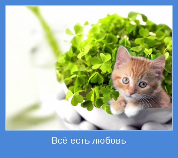 http://www.radionetplus.ru/uploads/posts/2012-11/1352013298_c8b854fe0746.jpg