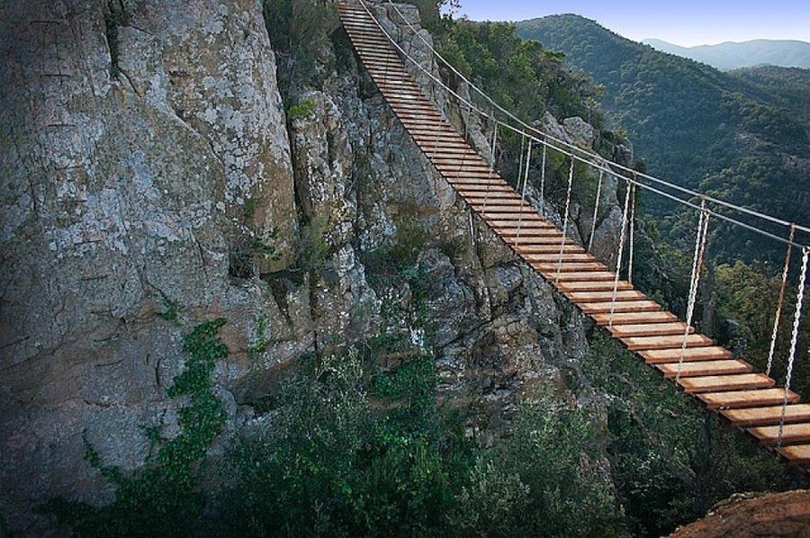 Необычные подвесные мосты