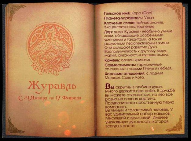 Гороскоп гаджетом на русском