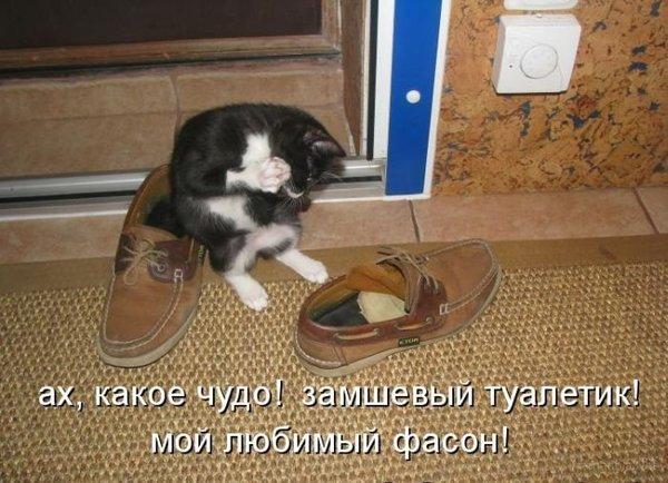 http://www.radionetplus.ru/uploads/posts/2012-12/1356510169_mysli-vsluh-10.jpg