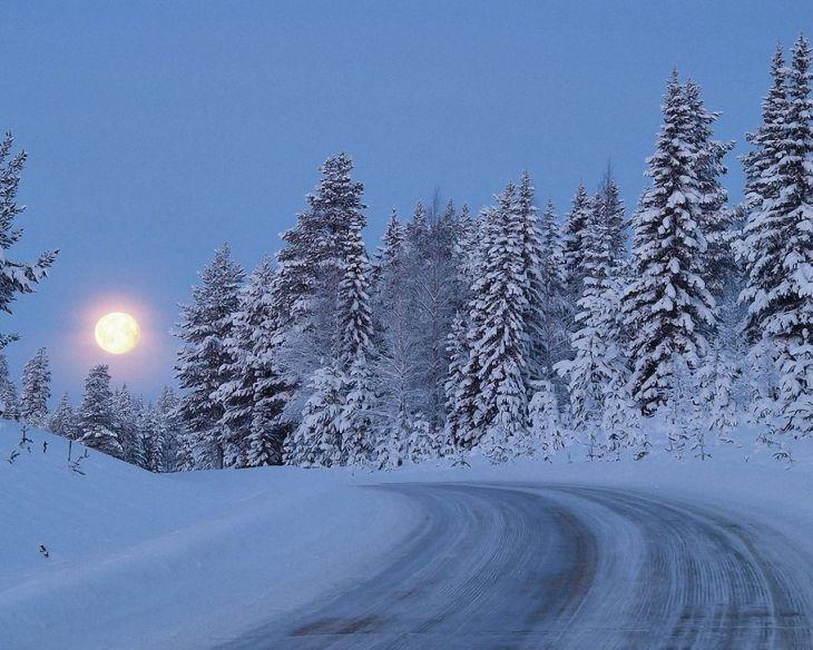 Обои на рабочий стол : Зима, зимушка , зима ...