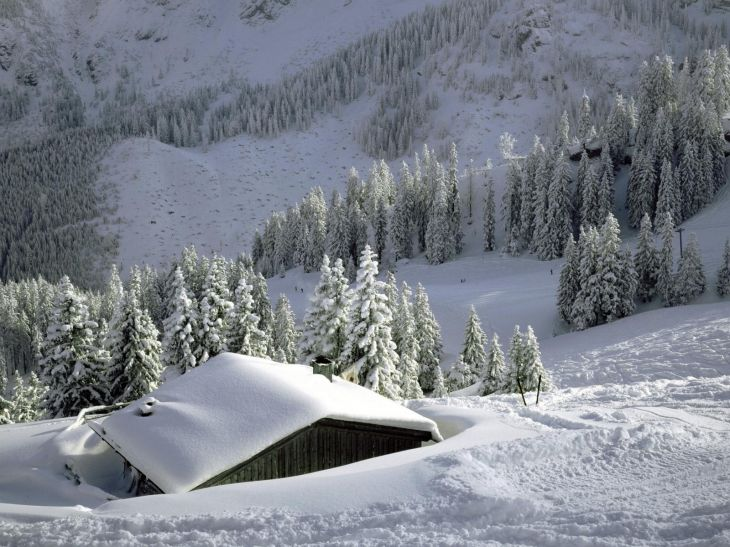 Обои для рабочего стола : Природа в зимнее время