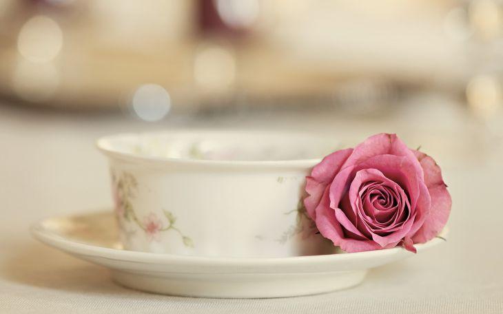 Красивые обои для рабочего стола: Розы (24 фото)