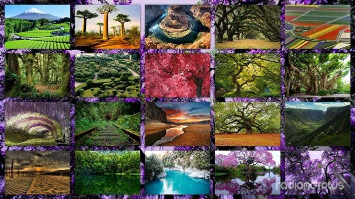 красивые картинки природы: