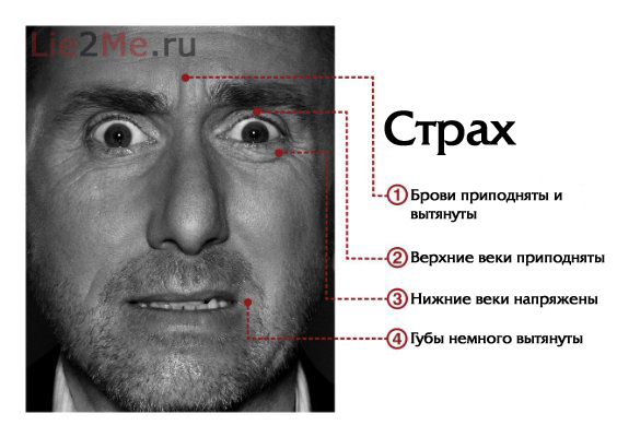 Как распознавать эмоции по мимике лица