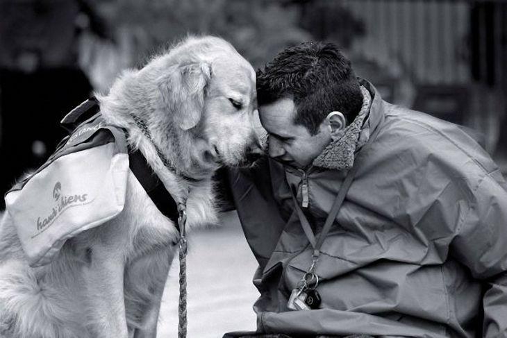 Сделаем мир добрее :) 55 добрых эмоциональных фото