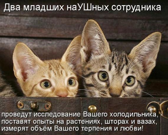 1371966867_www.radionetplus.ru-21.jpg