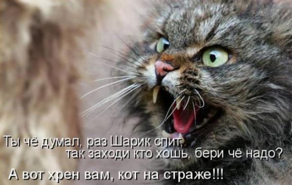 1371966867_www.radionetplus.ru-23.jpg