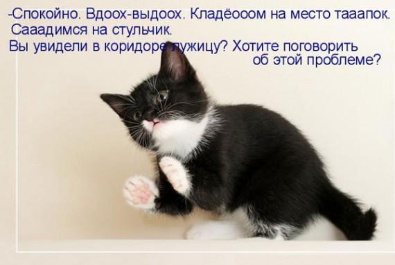 1371966880_www.radionetplus.ru-1.jpg