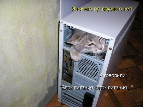 1371966891_www.radionetplus.ru-15.jpg