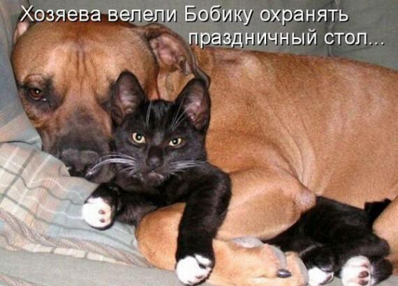 1371966906_www.radionetplus.ru-10.jpg