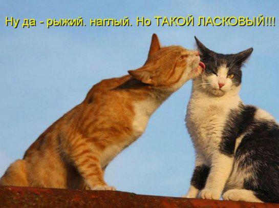 1371966931_www.radionetplus.ru-28.jpg