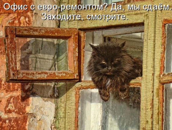 1371966935_www.radionetplus.ru-2.jpg
