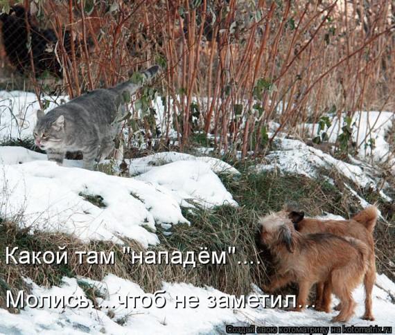 http://www.radionetplus.ru/uploads/posts/2013-06/1372193917_www.radionetplus.ru-11.jpg
