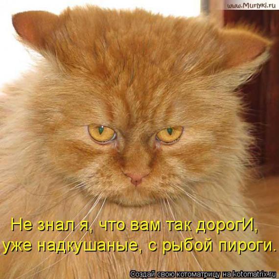 http://www.radionetplus.ru/uploads/posts/2013-06/1372193941_www.radionetplus.ru-17.jpg