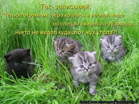 http://www.radionetplus.ru/uploads/posts/2013-06/1372193970_www.radionetplus.ru-27.jpg