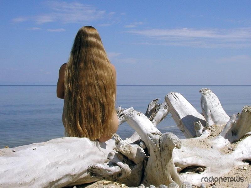 Длинный волос короткий ум