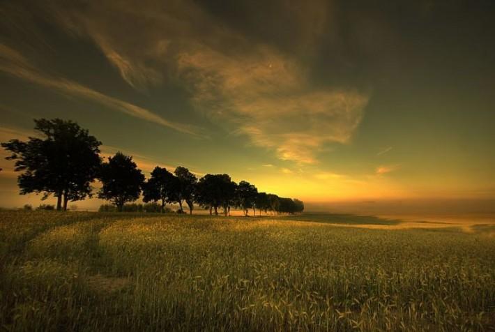 Красивая природа (44 фото)