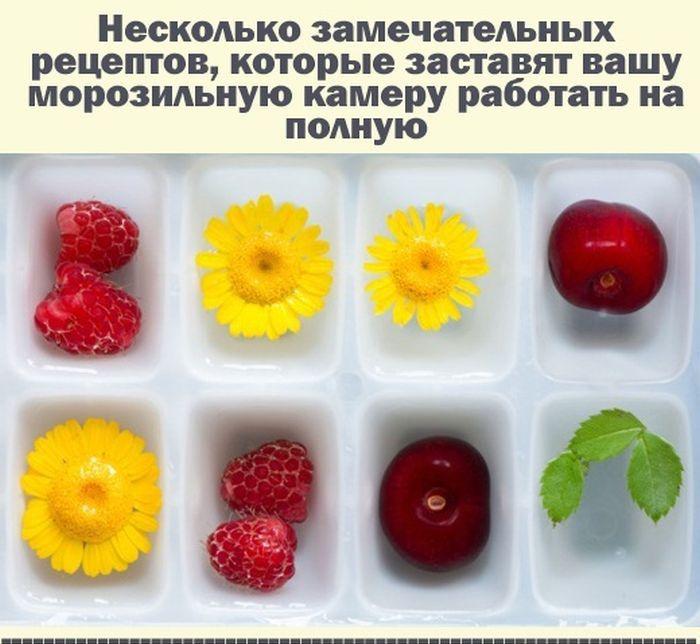 Полезные советы для заморозки