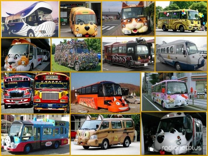 автобусы - Самое интересное в