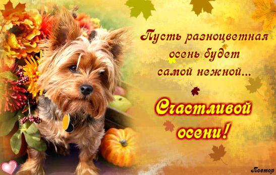 С осенью вас открытки