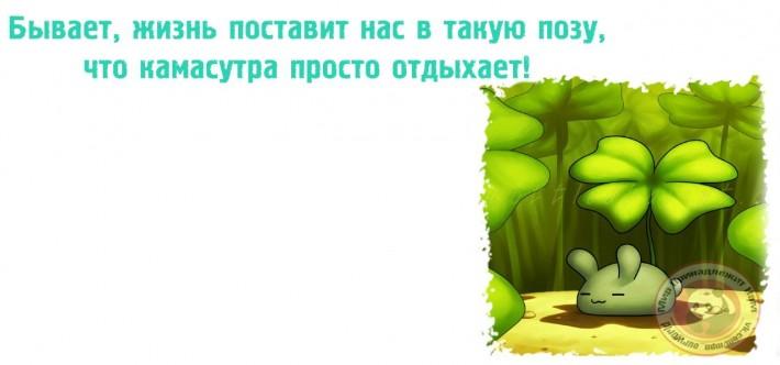 Прикольные фразочки в картинках №11914