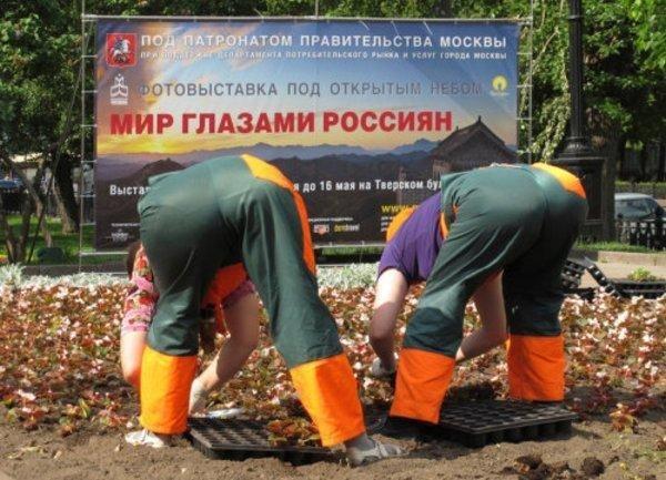 Юмор-давайте вместе посмеёмся! 1384370625_www.radionetplus.ru-52