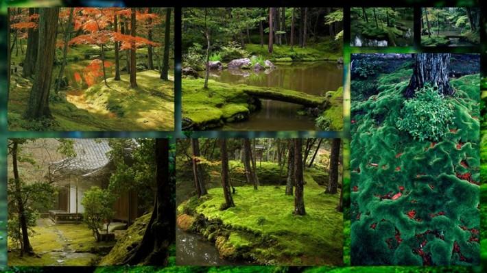 Сад мхов - храм Коинзан Сайходжи (Koinzan Saihoji) (текст +фото)