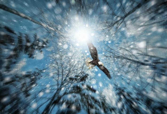 Фото-Ассорти: Красивые фотки (26 фотографий)