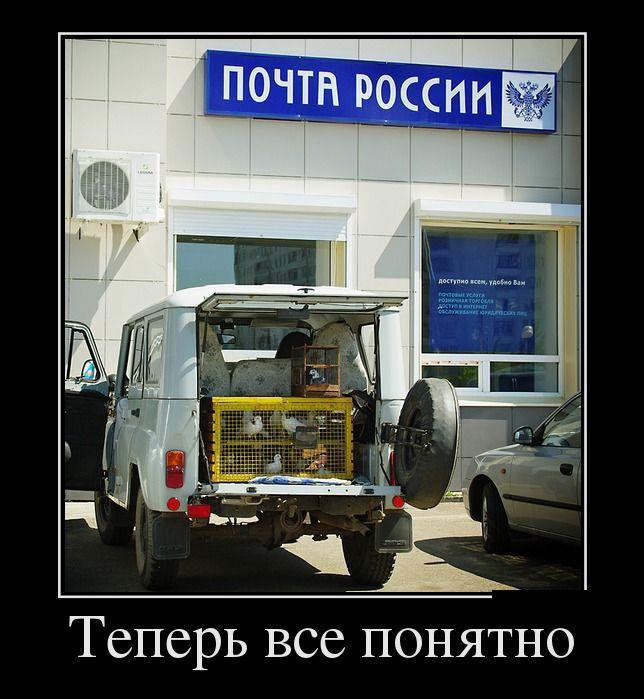 Юмор-давайте вместе посмеёмся! 1393266177_www.radionetplus.ru-24