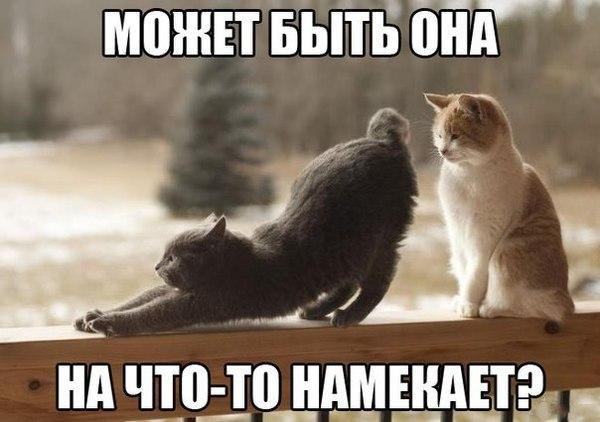 http://www.radionetplus.ru/uploads/posts/2014-03/1394998546_mysli-vsluh-1.jpg