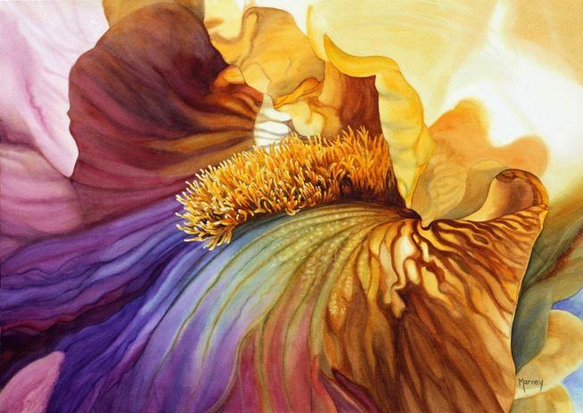 Акварельные цветы marney ward 22 картины