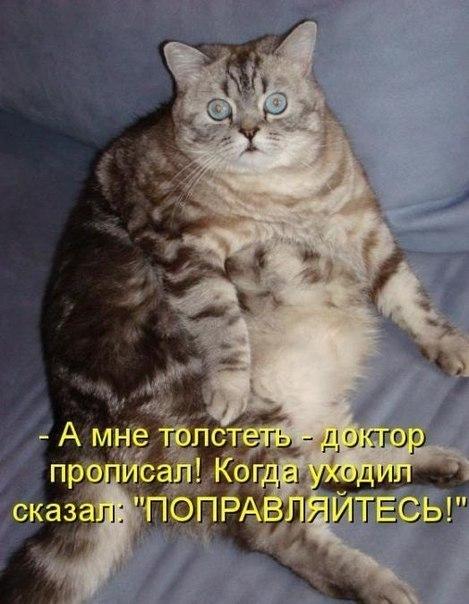 Вместе в Новый год) - Страница 6 1396293054_mysli-vsluh-2