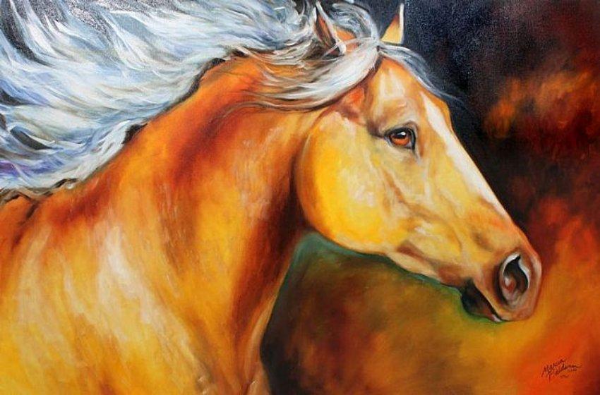 кони фото раскраски