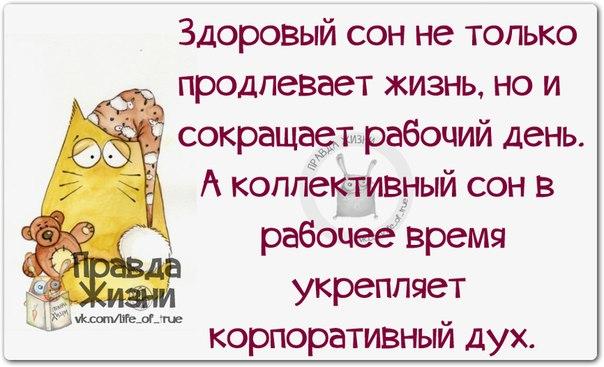 Юмор-давайте вместе посмеёмся! 1397072484_frazochki-1