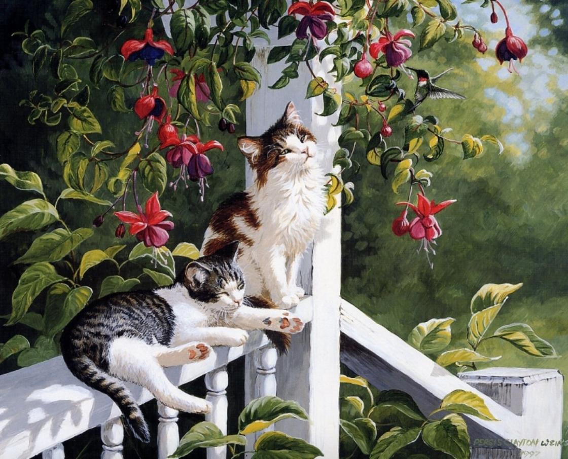 игры тесты кошки