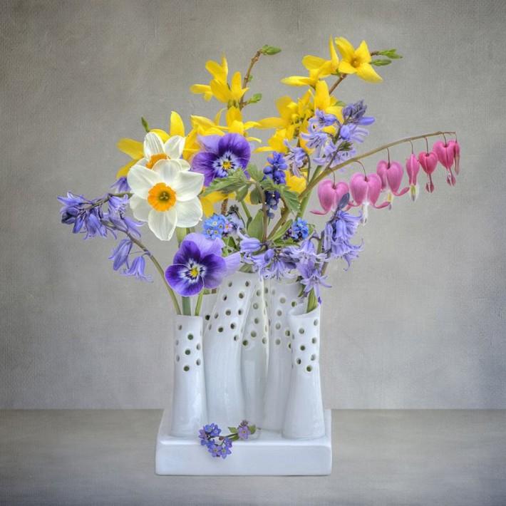 Нежные и живые цветы в работах фотографа JACKY PARKER.