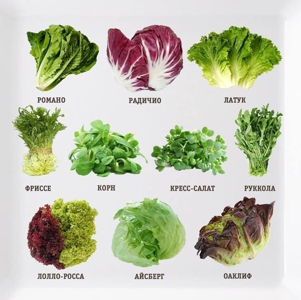 какие продукты лучше кушать чтобы похудеть