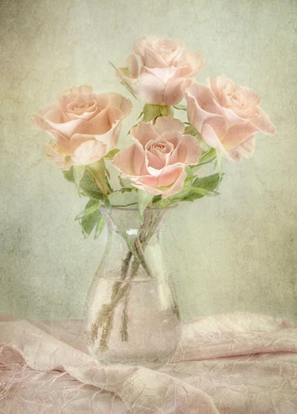 Красивые романтические эротические фотографии картинки рисунки